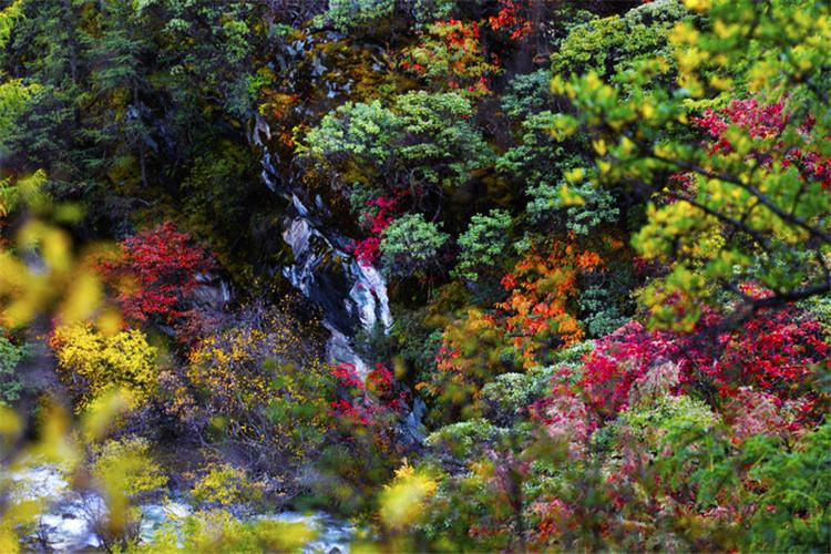 亚丁绚丽的色彩 摄影:印摄闲影